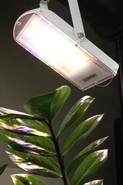 Bioledex GoLeaf A1 Pflanzenlampe 29W - Vegetatives Wachstum - Vollspektrum Grow Pflanzenleuchte